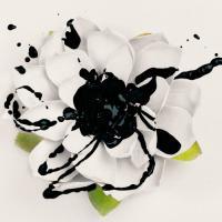Eyes Set To Kill-White Lotus