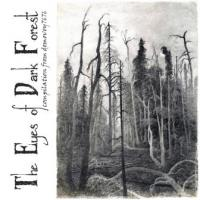 Various Artists-The Eyes of Dark Forest
