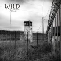 W.I.L.D.-The Domination Chronicles