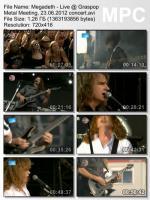 Megadeth - Live @ Graspop Metal Meeting (DVDRip) mp3