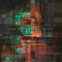 The Pineapple Thief-Hold Our Fire