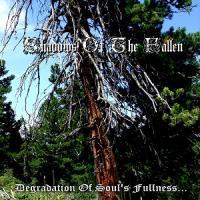 Shadows Of The Fallen-Degradation Of Soul's Fullness