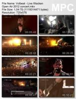 Volbeat-Live Wacken Open Air (DVDRip)