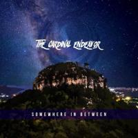 The Cardinal Endeavor-Somewhere In Between