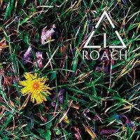 Acid Roach-Unseasonable