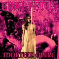 Goat Fetus-Mortem Obire