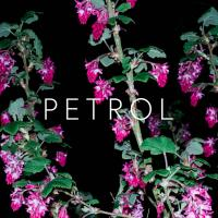 Crystalline Stricture-Petrol