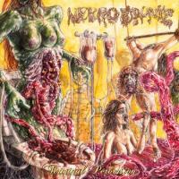 Nekro Drunkz - Terminal Perversion mp3