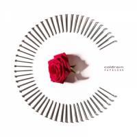 Coldrain-Fateless (Limited Edition)