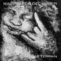Waiting for December-Strange Terrain