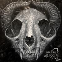 VA - Vulgar Display of Purring Presents: New York mp3