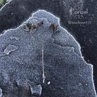 Porosl-Winterhome I