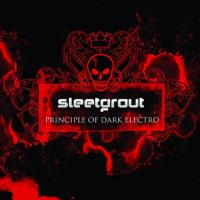 Sleetgrout-Principle Of Dark Electro