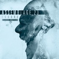 Assemblage 23-Endure (Deluxe Edition)