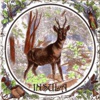 Insula-Insula