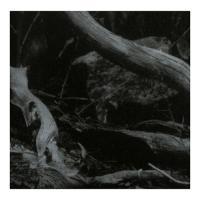 Barren Canyon-World Of Wounds