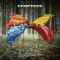 Carptree-Subimago