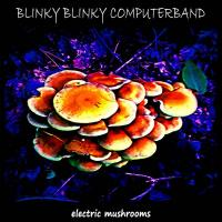 Blinky Blinky Computerband-Electric Mushrooms