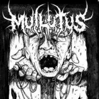 Muilutus-Nostrum Patria Est Nihil