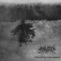 MetalBlack-Souls Of The Burning Woods