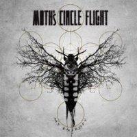 Moth's Circle Flight-My Entropy