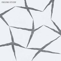Figure Study-Figure Study