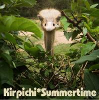 Кирпичи-Summertime