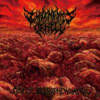 Implements Of Hell-Sea Of Necrophenomena