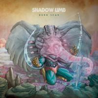 Shadow Limb-Burn Scar