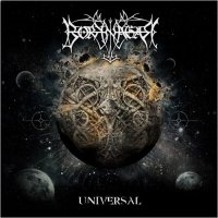 Borknagar - Universal (Limited Fanbox Edition) flac cd cover flac
