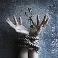 Forever Still-Tied Down