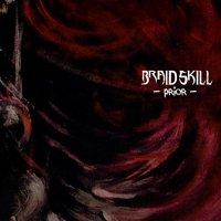 Braid Skill-Prior