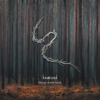 Lunatic Soul-Through Shaded Woods (Limited Edition)