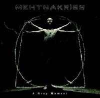 Mehtnakriss-A Grey Moment