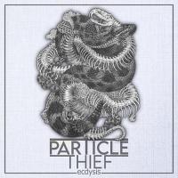 Particle Thief-Ecdysis