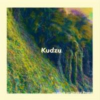 Unaka Prong-Kudzu