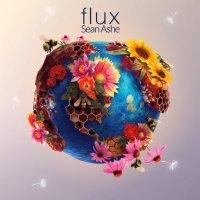 Sean Ashe-Flux