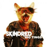 Skindred-Big Tings