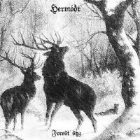 Hermóðr-Forest Sky