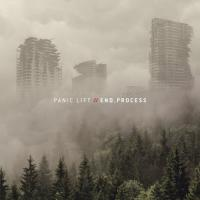 Panic Lift-End Process