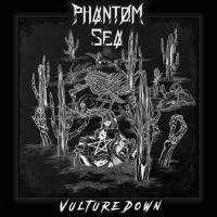 Phantom Sea-Vulture Down
