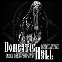 Various Artists-Domestic Hell