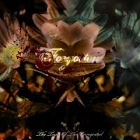 Forgotten-The Taste of The Unrequited