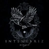 In Tenebriz - Winged mp3