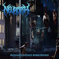 Neuropsy-Surpassing Rational Comprehension