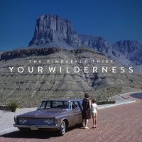 The Pineapple Thief-Your Wilderness