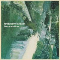 Morphogenesis-Stromatolites