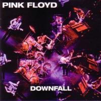 Pink Floyd-Downfall
