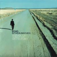 Echo and the Bunnymen-What Are You Going to Do with Your Life?