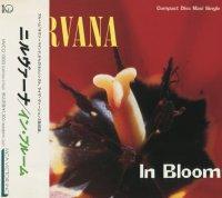 Nirvana-In Bloom (Japan)